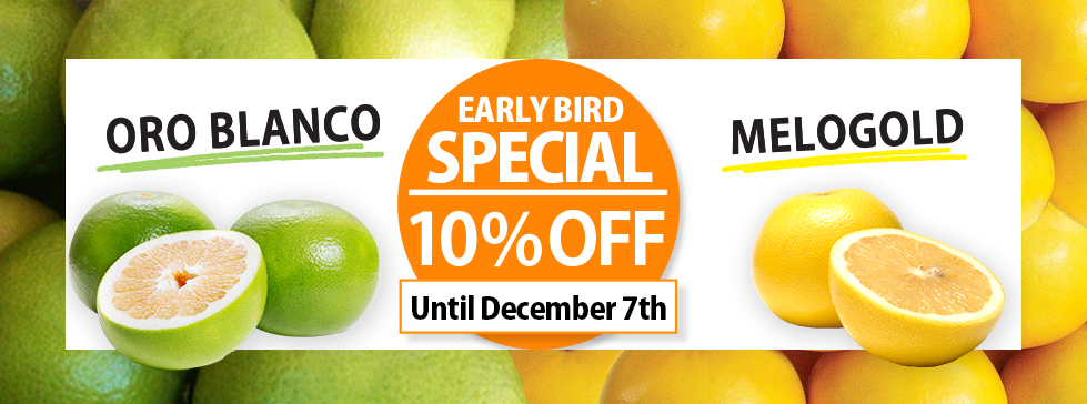 Oritz oroblanco and Melogold early bird special! 10% OFF