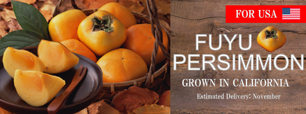 Fuyu persimmon for USA. Perfecr gift for fall